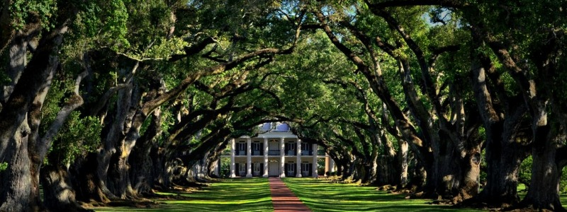 Plantations of Charleston, SC