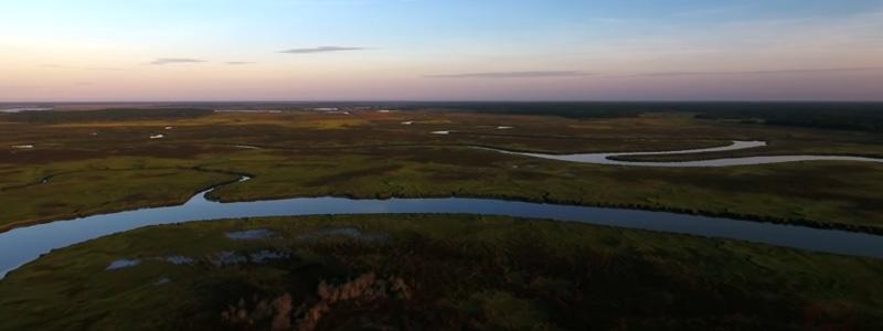 Placid Edisto Island